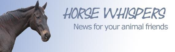 Horse Whispers - Newsletter