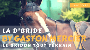 d'bride gaston mercier