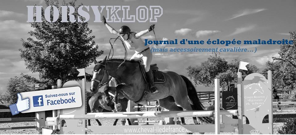 blog horsyklop journal du'ne éclopée maladroite
