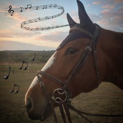 horsecom-musique