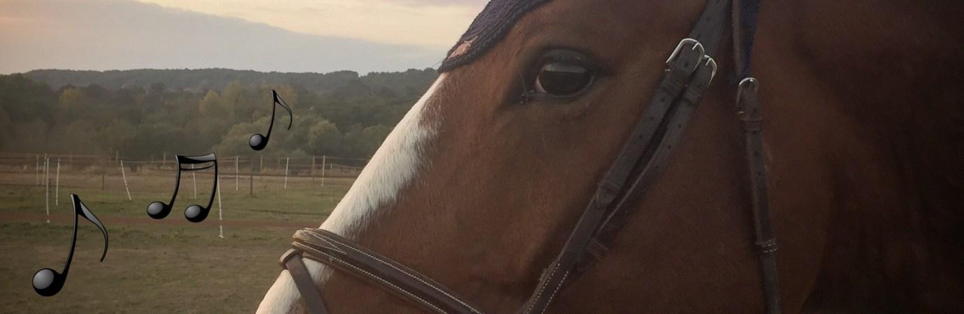 Tuto Horsecom : calculer le BPM