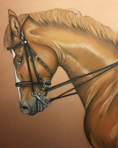cheval pastel dressage