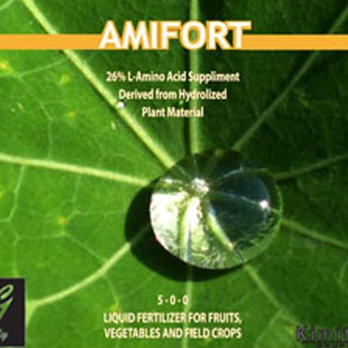 amifort