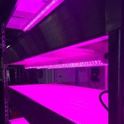 growrack-2017-lights2-web