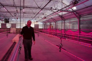 Steve Newman, who is Colorado State's greenhouse crops extension specialist and professor of floriculture, said the new horticulture center will be used for research, teaching and training.