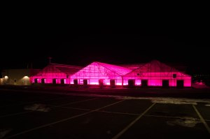 Philips Lighting has some of its own research agenda items that it would like to study in Colorado State's horticulture center, but the research is not much different than what university scientists want to do.