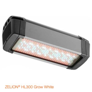OSRAM-ZELION-HL-300-grow-white