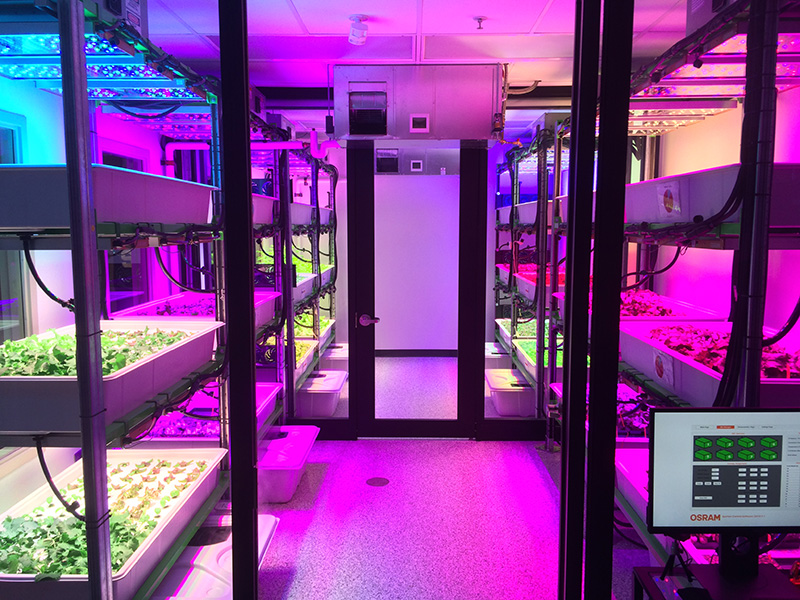 what is the impact of led grow lights