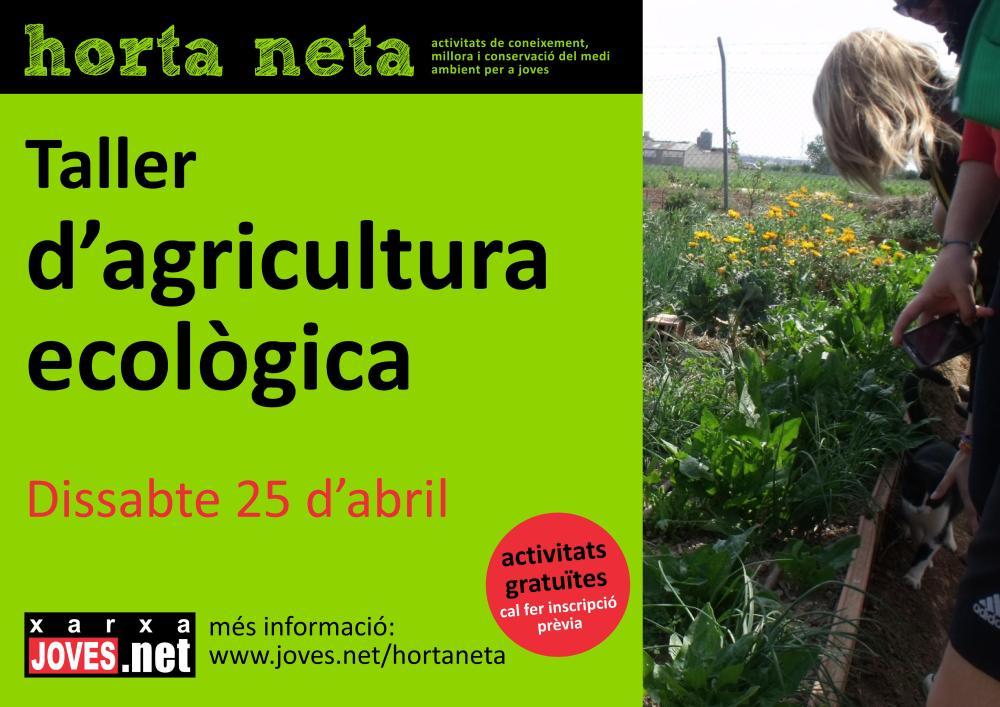 Taller d'agricultura ecològica (3/3)