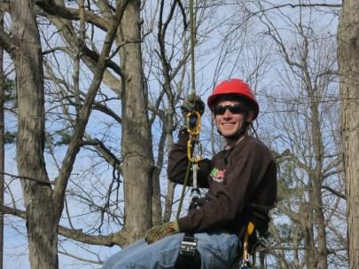 Aboriculture - Tree Maintenance