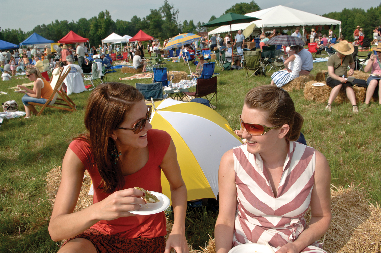 Farm to Form sunny weekend picnic