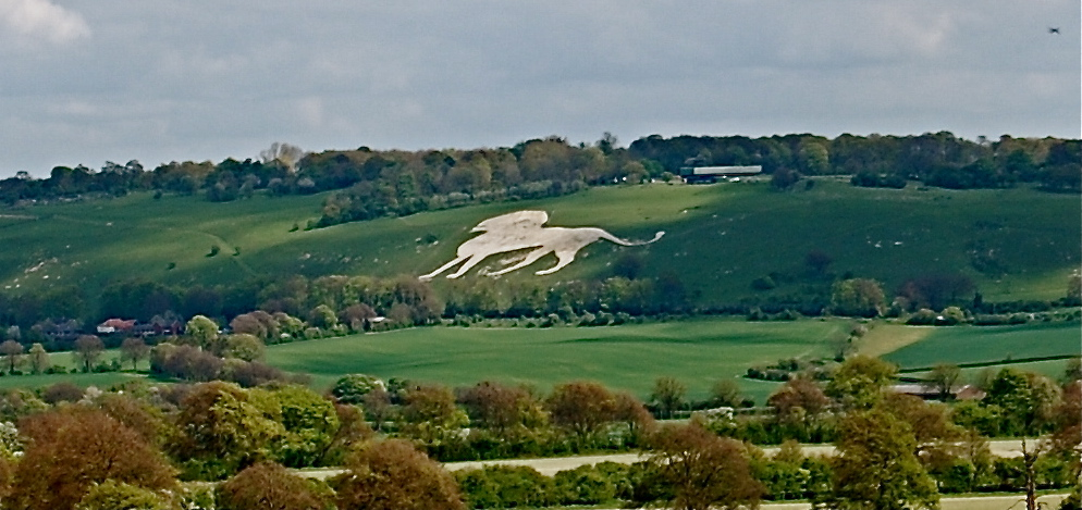 The Whipsnade Lion in all of it's glory.