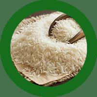 arroz_web