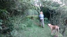 Caminhando no mato com a Débora e os filhotes amados!