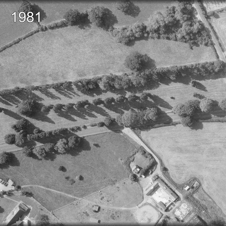Horton-Cemetery-1981