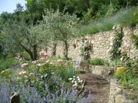 Tuscan paradise | HORTUS 2: There is life after retail