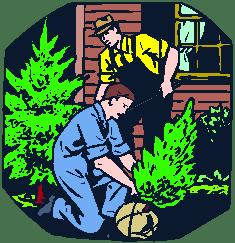 landscaping men work hortus