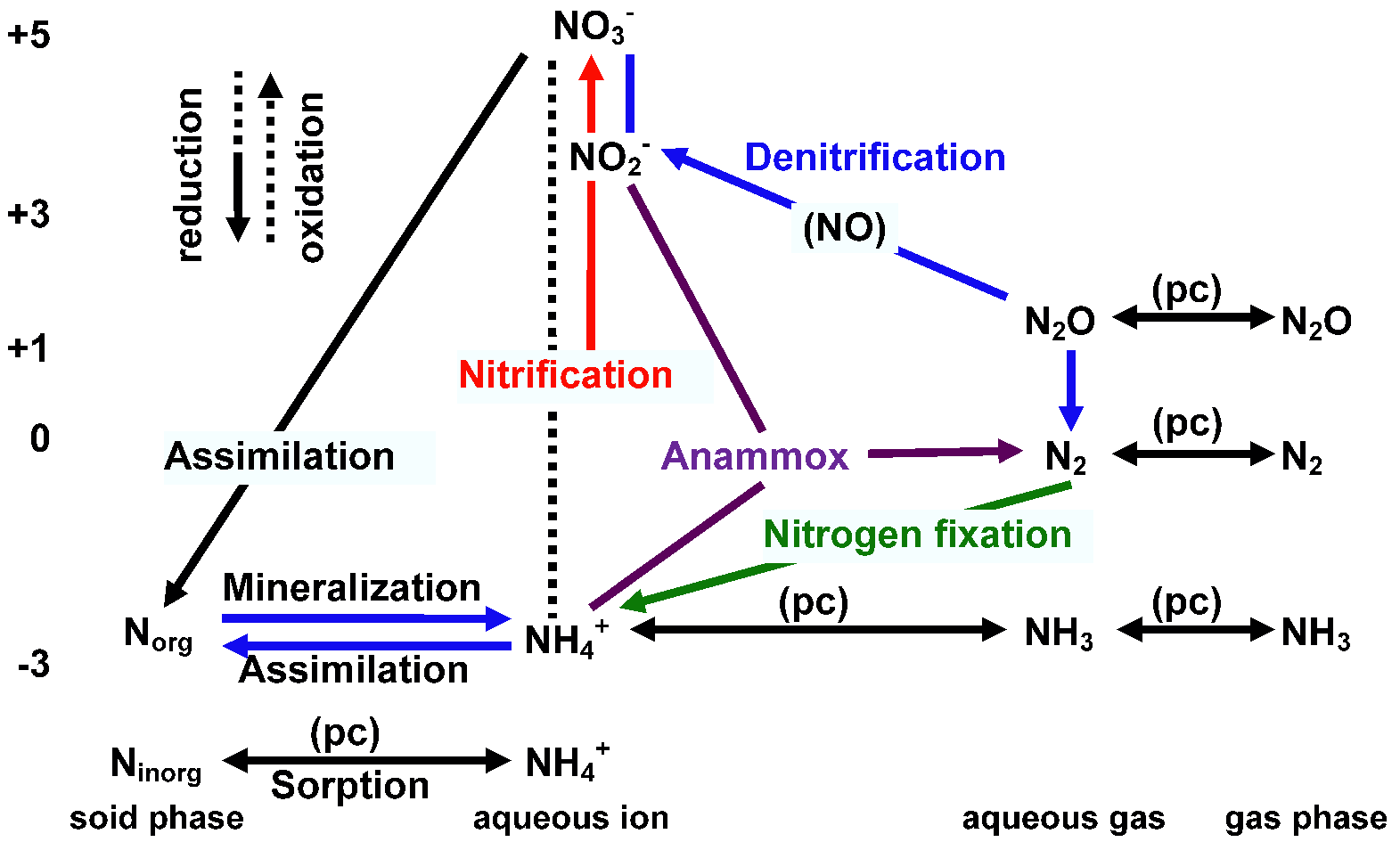 hight resolution of nitrogen cycle