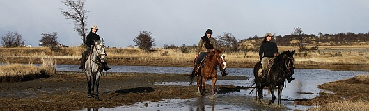 Pferdetour Patagonien-Style