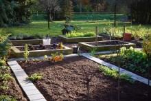 Kitchen garden ready for next year