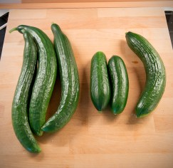 cucumber anyone? :D Three different varieties.