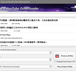 ChrisPC Free VideoTube Downloader 11.03.15 網路影音 YouTube 批次下載工具