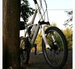 第一次在台南騎單車。虎頭埤風景區