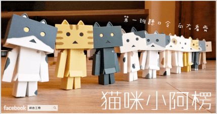 【開箱】貓咪小阿楞來囉~家裡突然又多了十隻喵楞!