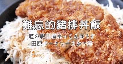 【田原】讓人難忘的美味炸豬排丼,道路休息站兼具美食與市集唷!