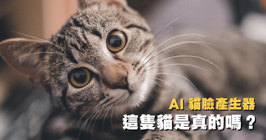虛擬AI貓咪產生器