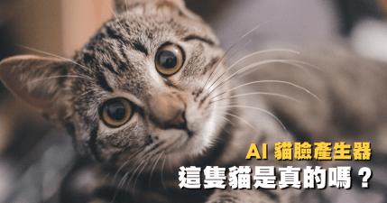 奴才們認的出來這是 AI 生成的虛擬貓臉嗎?這些貓全部都不存在!