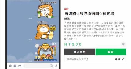 LINE 白爛貓☆隨你填貼圖☆初登場~填上自己的名字吧!