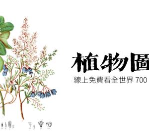 Internet Archive 開放 19 世紀植物圖鑑,超過 700 種植物免費讓大家閱覽