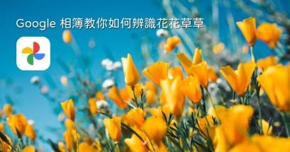 辨識花草除了形色之外,Google 相簿也內建了辨識花草的功能唷!