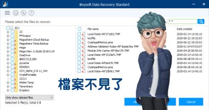 iBoysoft Data Recovery 檔案救援工具免安裝版下載 Standard edition
