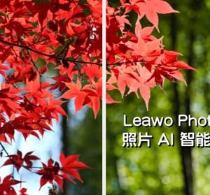 限時免費 Leawo PhotoIns Pro 照片 AI 智能處理工具,懶人修圖選這個就對了!