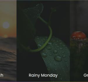 Spaces.fm 擁有 9 種超優質的大自然音效,幫你在讀書或工作上更有效率!