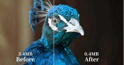 ShortPixel 圖片壓縮工具 90% 超高壓縮率,肉眼分辨不出來的好品質!