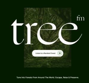 Tree.fm 大自然好聲音線上聽,工作時保持專注與療愈的蟲鳴鳥叫聲