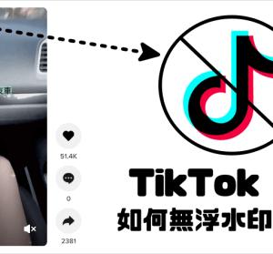 TikTokFull 影片無浮水印下載,線上工具免安裝任何 App