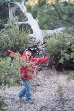 11-9-2014_Loki_Boyscouts_Lost_Valley_Camp_JPY6463