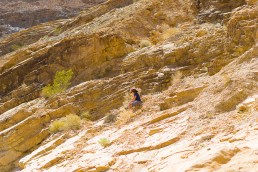 3-30-2016_The_Great_Spring_Break_Road_Trip_of_2016-Death_Valley-Sequoia-Yosemite__DSC1939