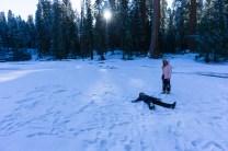3-31-2016_The_Great_Spring_Break_Road_Trip_of_2016-Death_Valley-Sequoia-Yosemite__DSC2431