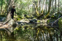 4-1-2016_The_Great_Spring_Break_Road_Trip_of_2016-Death_Valley-Sequoia-Yosemite__DSC10204