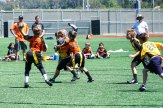 4-16-2016_Loki_Steelers_Game_4_DSC01358