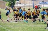4-30-2016_Loki_Steelers_Game_6_DSC02756