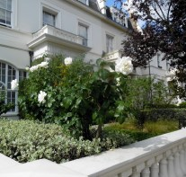 A Notting Hill home's front yard