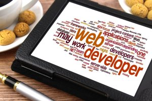 Web developer promotoions