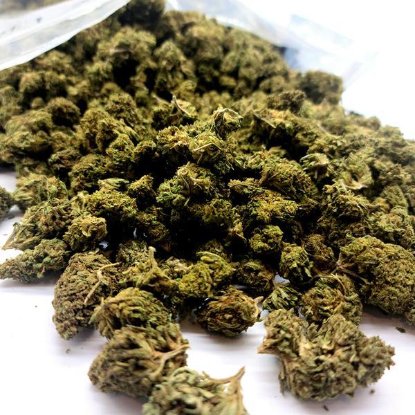 By the pound - bulk prices for Delta 8 hemp flower