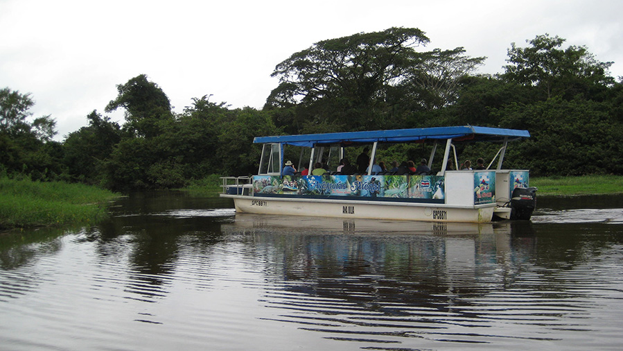Caño Negro From: $64.00 p/p